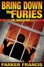 Cover of &#039;Bring Down the Furies&#039; by Parker Francis